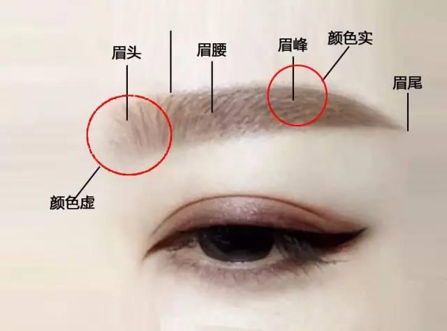 根据脸型画眉毛,最自然